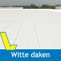 witte daken_nieuw